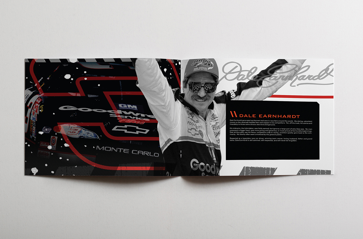 Dale Earnhardt Inc Style Guide